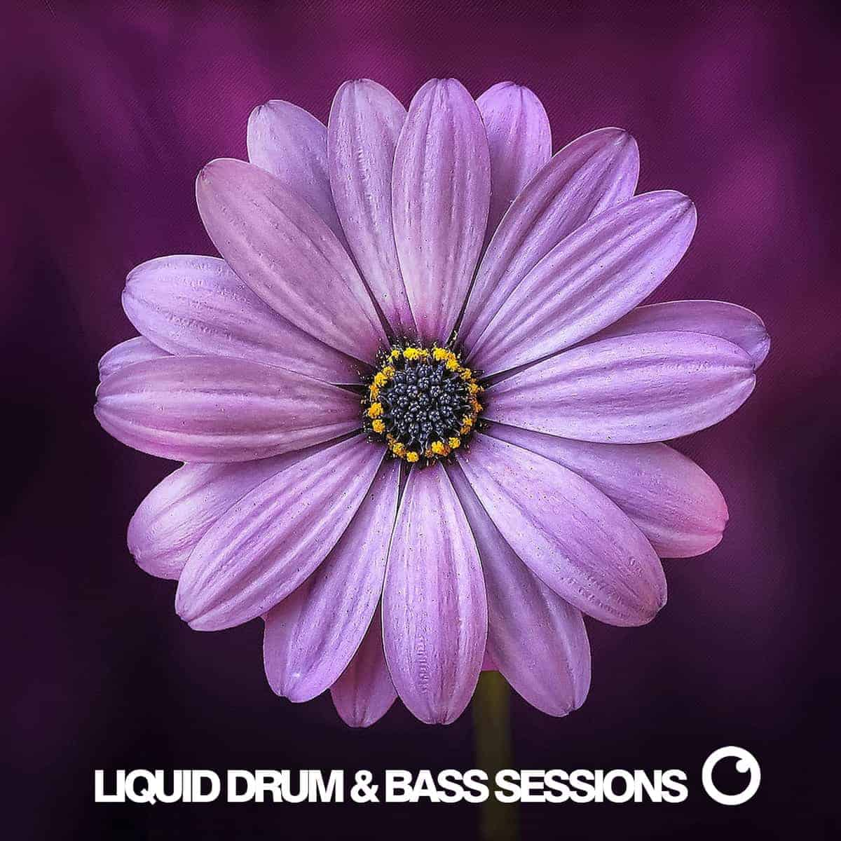 Liquid Drum and Bass Sessions