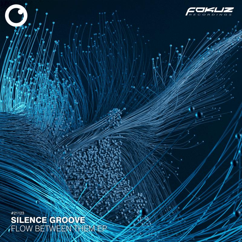 FOKUZ 21123 – Silent Groove – Flow Between Them EP_1000