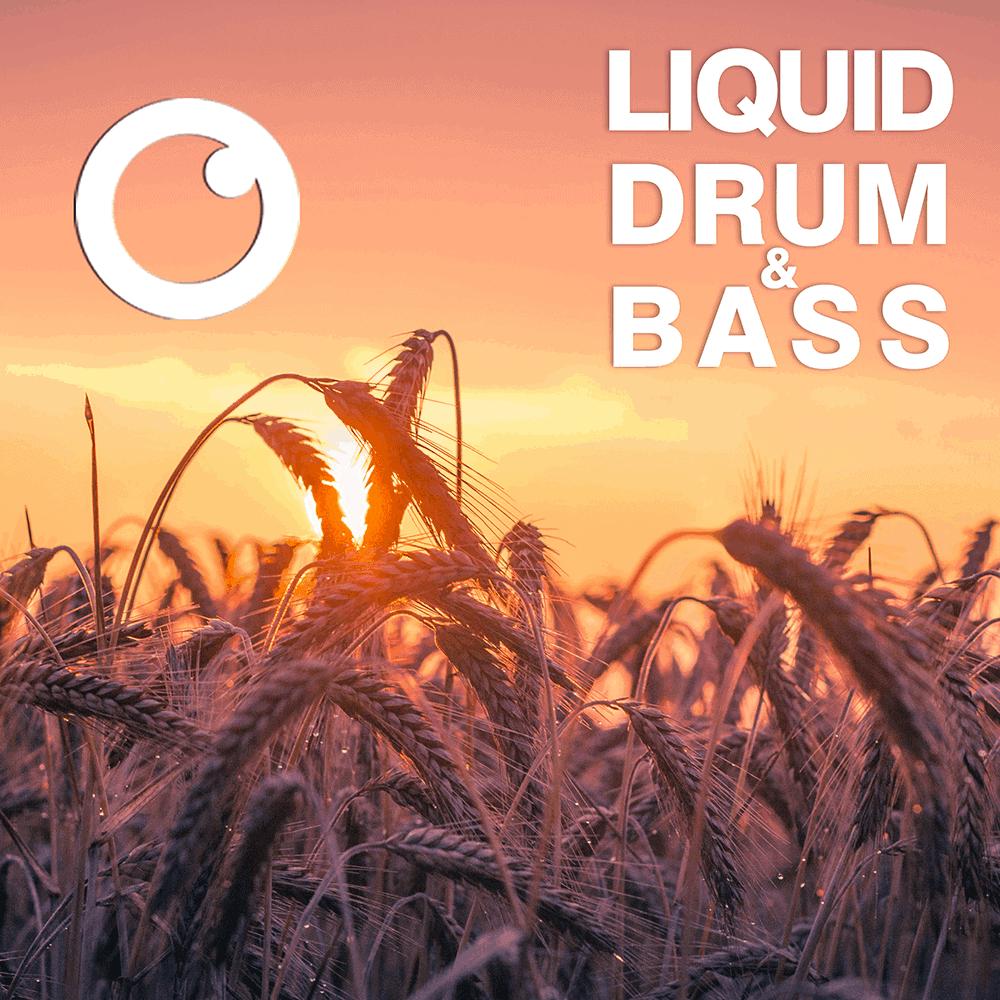 Fokuz Recordings Podcasts [Liquid Drum and Bass]